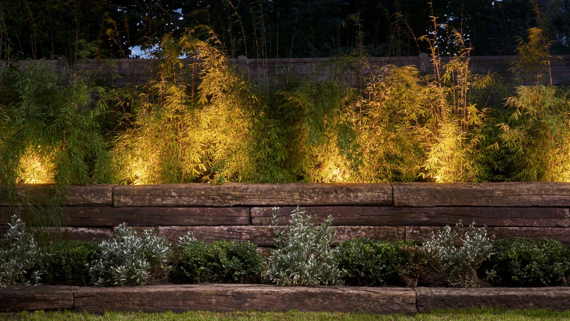 Andrea Vytlacil Garden Design   Garden Design Process   Survey