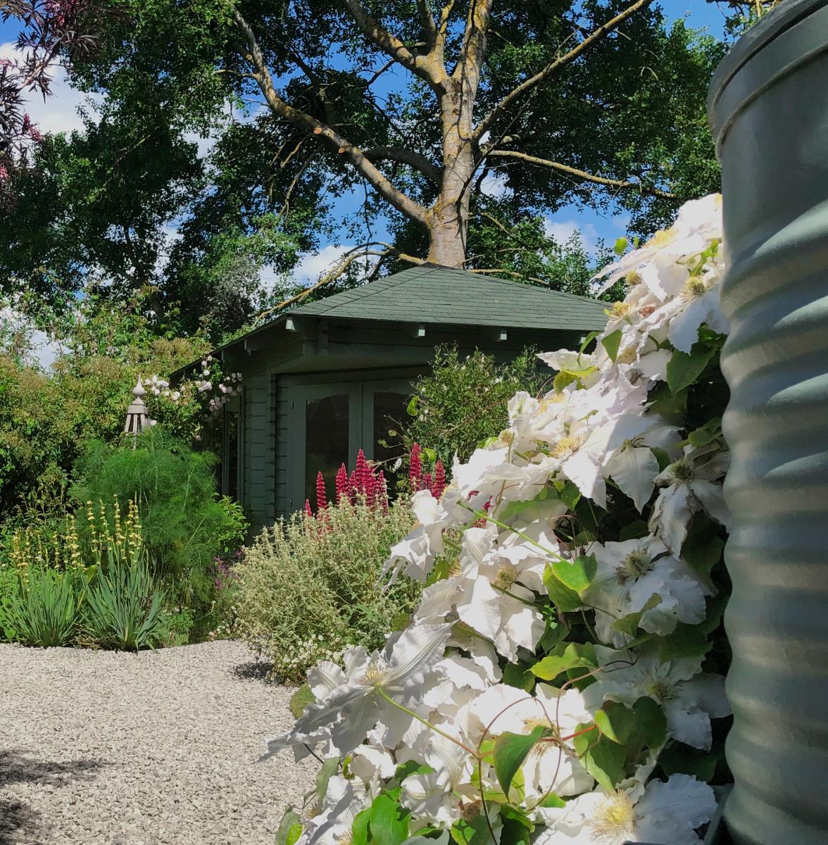 Garden Design By Andrea Vytlacil Garden Designer South West London